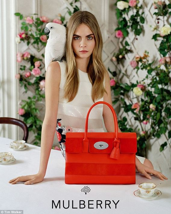 mulberry14